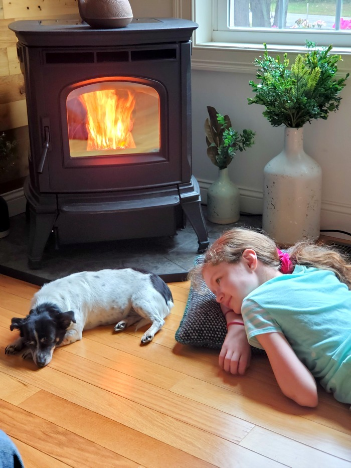 Harman Pellet Stove lit with dog and girl near it
