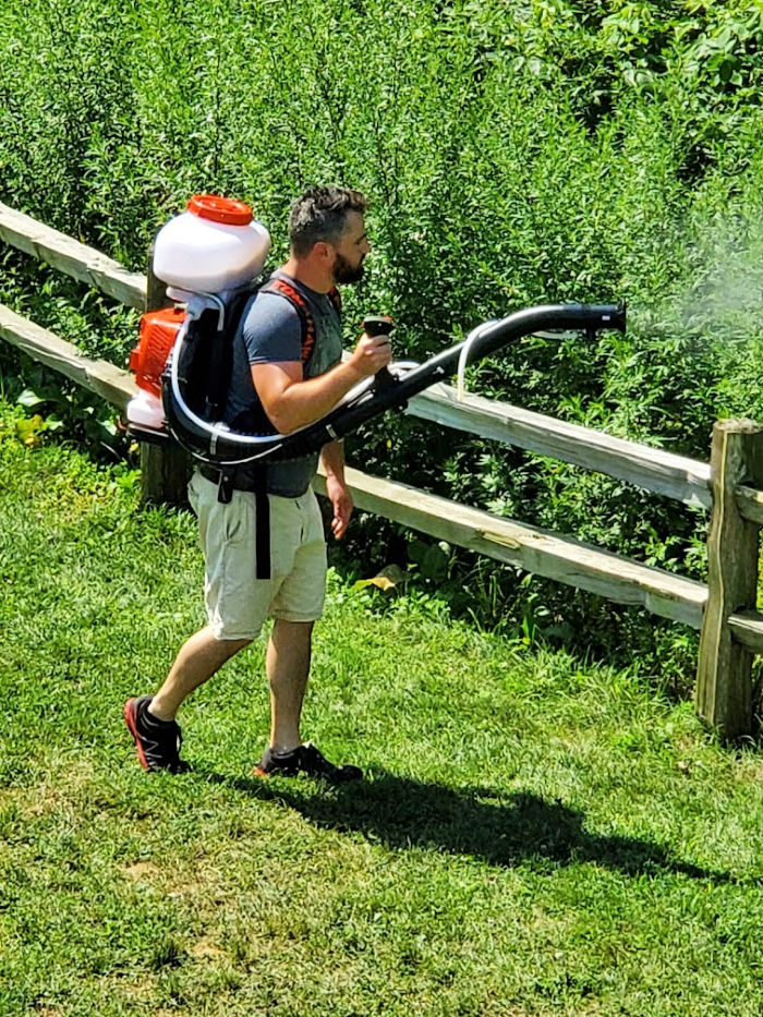 Man using a backpack sprayer to spray a yard for mosquitoes and ticks. Green leaves and grass in background.